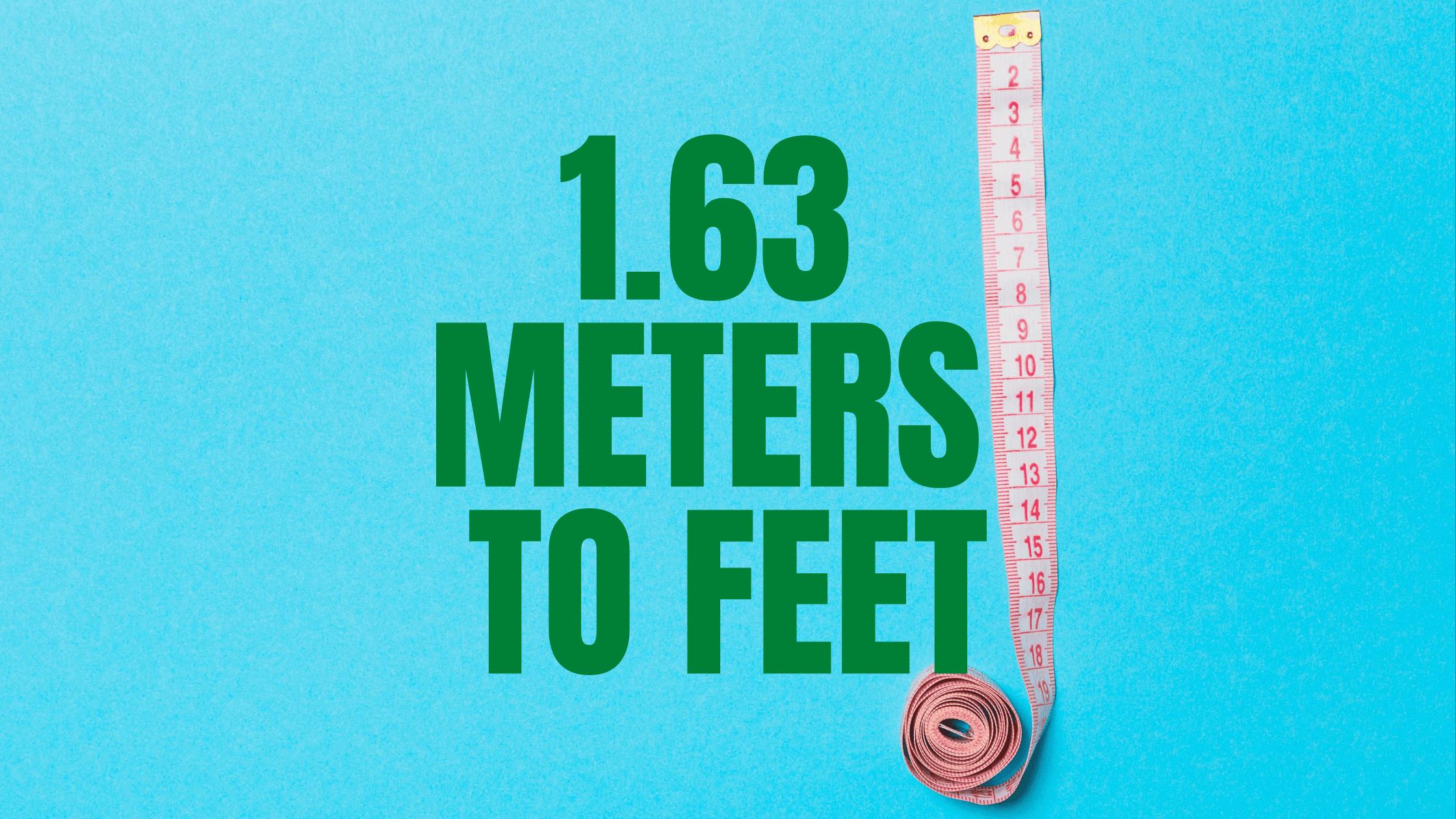 Meter 1 feet in Foot (unit)